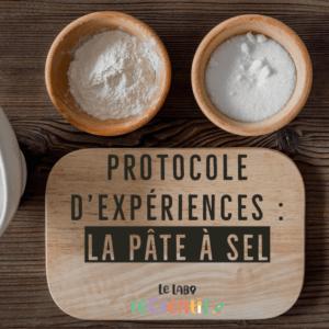 Protocole d'expériences : recette de la pâte à sel